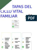 Etapas Del Ciclo Vital Familiar
