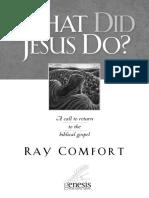 what_DID_Jesus_do.pdf