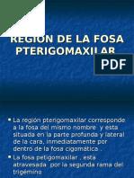 8 .-Region de La Fosa Pterigomaxilar