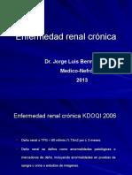 Enfermedad Renal Cronica 1