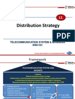 TelSysBiz 12 Distribution Strategy (2)