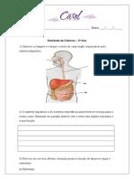 Sistema Digestório 2