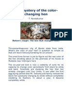 The Mystery of the Color Changing Hen