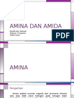 Amina Dan Amida