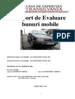 Raport Evaluare BIMPRD Volkswagen Pasat 13.02.2014
