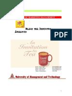 47647260 Strategic Marketing Management Lipton Tea