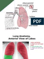 KP 5.7 dr. Darwin, Sp.B Anatomi Sistem Respirasi.pptx
