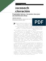 Español Articulo