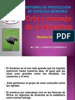 Manual de Cria y Manejo de La Avestruz (1)