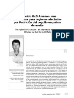 ASD Hibrido OxG Amazon 2013.pdf