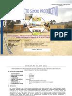 Proyecto Socio Productivo2016
