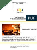 1 NORMAS.pdf