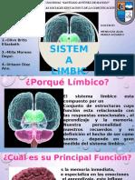 sistema-limbico-Autoguardado.pptx