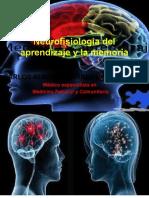 Neurofisiología del aprendizaje y la memoria.pptx