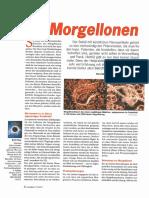morgellon-artikel-in-raum-und-zeit.pdf