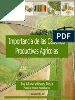 Importancia Cadenas Product i Vas Agricolas
