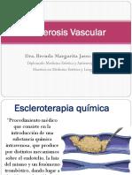 Esclerosis Vascular