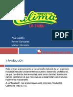 Productos Calima.pptx