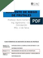 M.10-3.2+3.3+3.4-Absorc, Transporte y Rutas Agua por las pl.ppt