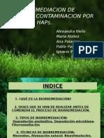 Biorremediacion2.pptx