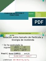 Funcion Seleccion y Fractura