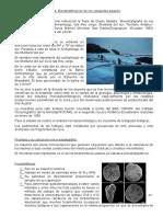 Bioestratificación de Los Casquetes Polares