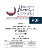 Report Simulation