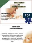 10envejecimientoppt-120703163453-phpapp01 (1).pdf