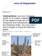 Y11 Unit 8-9 Adaptive Features Filej
