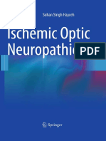 Ischemic Optic Neuropathies - S. Hayreh