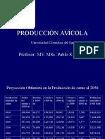 A Produccion Avicola Cl 1,2. Csur
