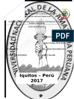 Informe 01 - Práctica Meteorología UNAP