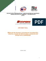 Negocio de Abejas.pdf