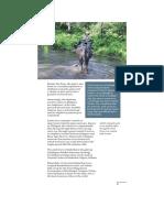 india52.pdf