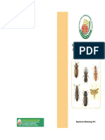 major insect pests