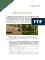 RECONVERSIÓN GANADERA.docx