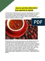 Ceaiul de MACESE Previne Infarctul Si Combate Pietrele La Rinichi