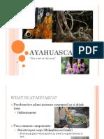 Ayahuasca - English