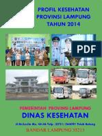 08_Lampung_2014.pdf