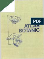 Atlas Botanic - CuOCRplus1pag Pt SplitOK