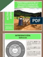 Tema 13 Las Actividades Agrarias en Espana