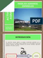 Tema 13 Los Paisajes Agrarios