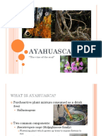 Ayahuasca - English.pdf