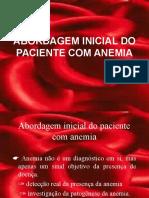 Abordagem Do Pcte Com Anemia2