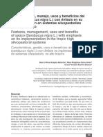 8 Características, manejo, usos y beneficios del saúco (Sambucus nigra L.pdf