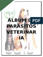 ALBUM DE PARASITOS.docx
