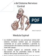 Atlas de Neuroanatomia 2012