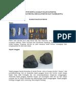 Hasil Budaya Dan Fungsinya Zaman Paleolitikum