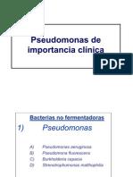 Clase 6 Pseudomonas