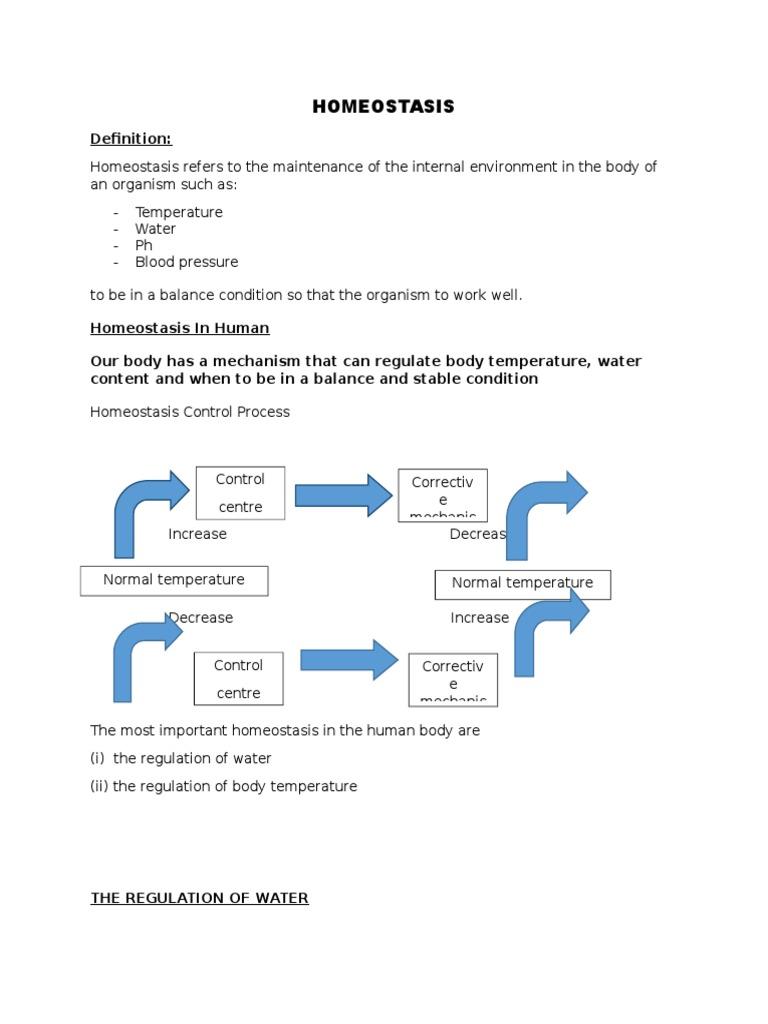 Homeostasis Homeostasis Thermoregulation